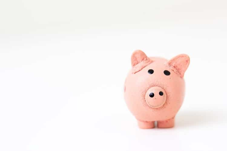 Do You Feel Curious About Why A Piggy-Bank Shaped Like A Pig?